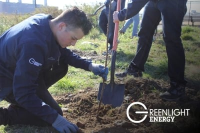 As part of America Recycles Day, Greenlight Energy planted nearly 400 trees in New York's City's Randall's Island parks. (Source: Greenlight Energy)