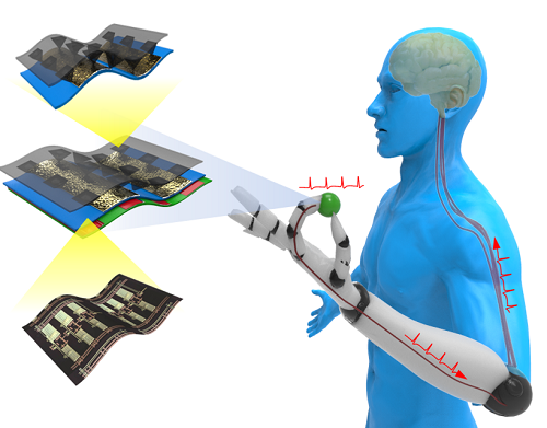 Figure 3. Stanford's artificial skin translates physical contact with objects into pluses of light that can interact with neurons in the body to create the sensation of touch. (Source: Stanford University)