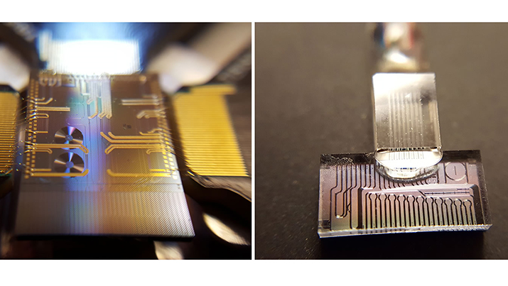 Photonic chips.On the right, the chip is connected to optical fiber, allowing quantum state manipulation with standard telecommunications components. (Credit: INRS University)