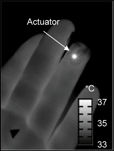 The thermal actuator in the epidermal sensing device generates heat up to 7 degrees Celsius, imperceptibly warming the skin. Blood in vessels beneath the device carry away the heat, and the device's sensors measure the direction of blood flow and the dissipation of the heat. (Source: R. Chad Webb, Department of Materials Science and Engineering, University of Illinois at Urbana-Champaign)