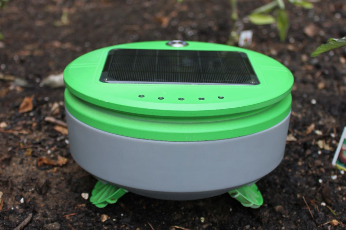Solar panel operated weed whacker robot. Image credit: Franklin Robotics