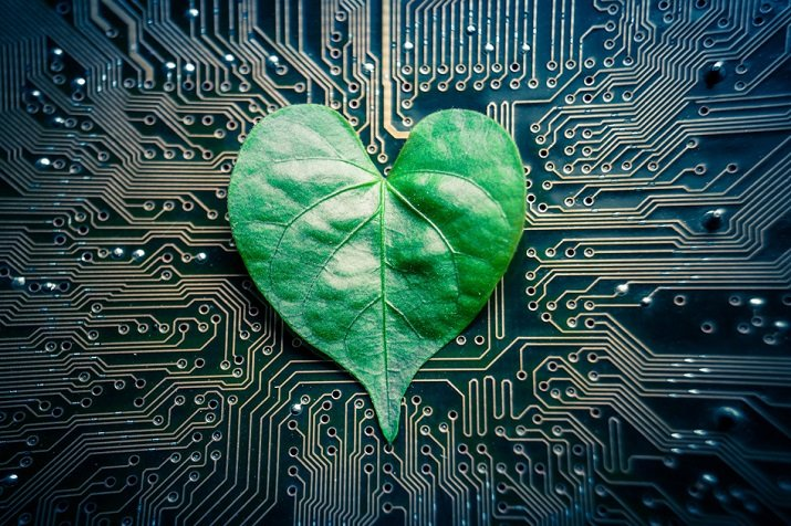 Engineers at MIT created a chip that mimics trees and plants and could one day power small robots through hydraulic power. Source: MIT