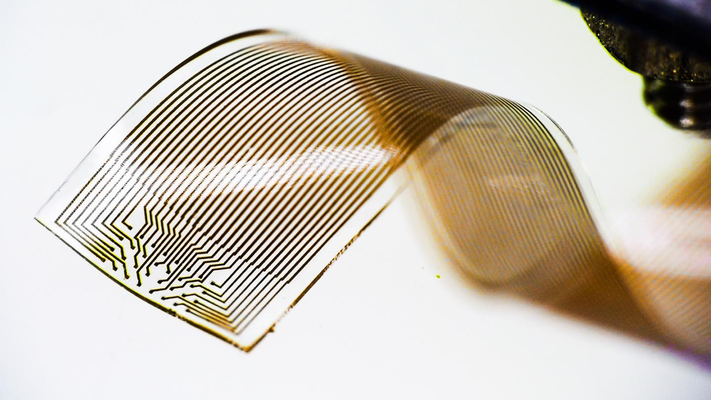 Klas Tybrandt, LOE, has developed new technology for long-term stable neural recording. It is based on a novel elastic material, which is biocompatible and retains high electrical conductivity even when stretched to double its original length. Source: Linkoping Unviersity/Klas Tybrandt