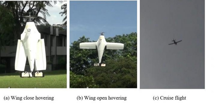 The three flying modes of the U-Lion with vertical landing and take off and cruise flying like a fixed-wing drone. Source: National University of Singapore
