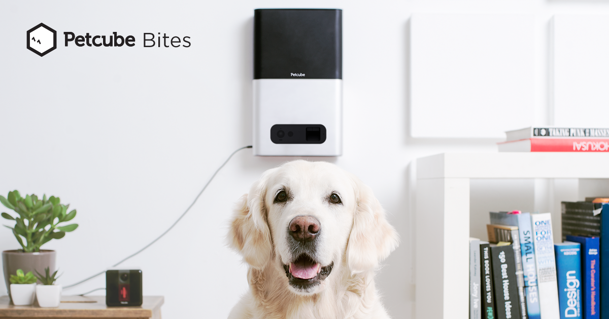 The new Petcube Bites interactive pet camera. (Source: Petcube)