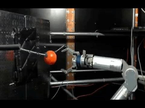 Monkeys used their thoughts to grasp a ball with a robotic arm. Image credit: Nicho Hatsopoulos, Karthikeyan Balasubramanian.