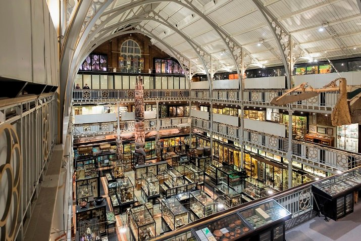LED lighting will save the Pitt Rivers Museum about $64,000 over the next five years and reduce its carbon emissions by 44 tonnes each year. Source: Soraa
