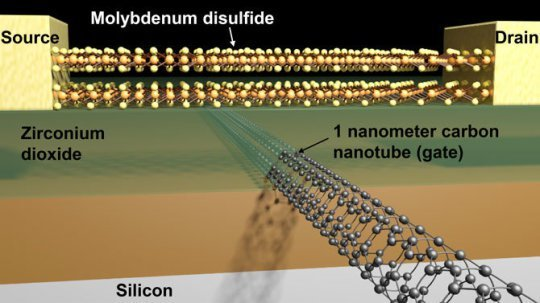 Figure 2. Schematic of a transistor with a molybdenum disulfide channel  and 1-nanometer carbon nanotube gate. Credit: Sujay Desai/UC Berkeley