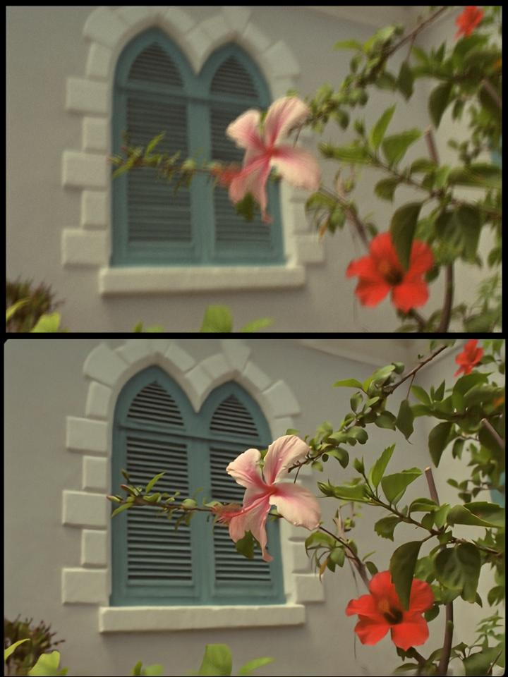 TOP: The research team artificially degraded a stock image, deliberately introducing blur, noise and other imperfections. BOTTOM: The research team's new image repair algorithm automatically returned the image to near-original quality.  (Don Cochran, Kodak Lossless True Color Image Suite)