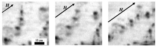 Microphotographs of magnetic polymers with particles forming chain aggregates directed along the magnetic field H. Source: Andrey Zubarev