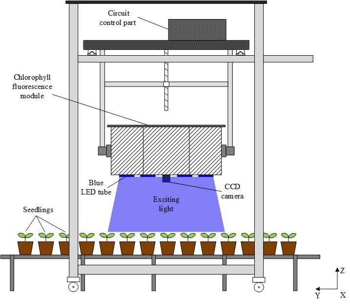 A new fluorescence imaging system uses a large imaging area to provide information about plant health. It is designed for use in greenhouses or in the field and could one day enable farm machinery that automatically responds to plants showing stress. (Haifeng Li, Zhejiang University)