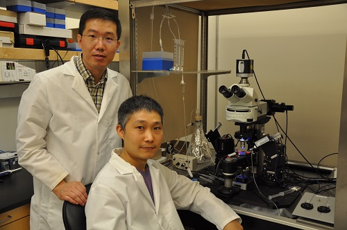 Researchers Jun-Hyeong Cho (left) and Woong Bin Kim in their lab. Source: UC Riverside