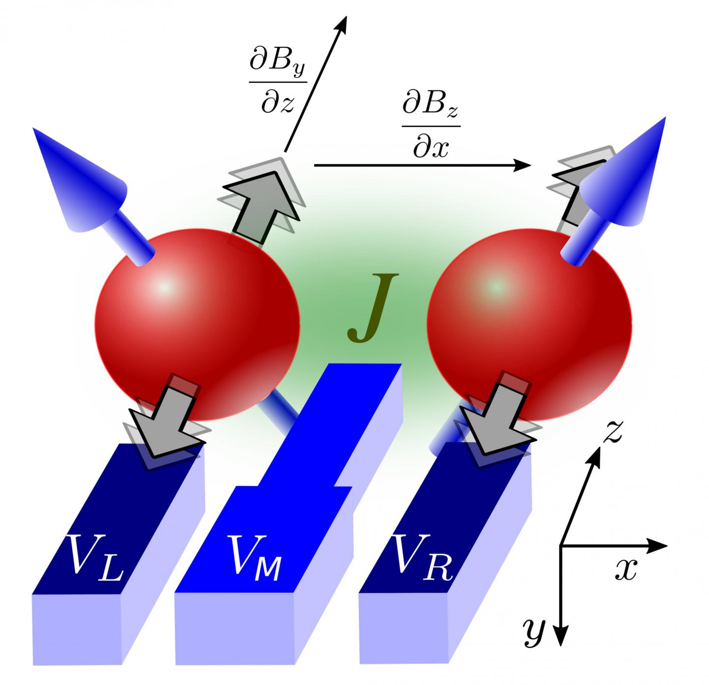These are the quantum gates of two silicon electrons. Two nano-electrodes (VL and VR) control the angular momentum of both electrons. A third nano-electrode (VM) coordinates the interaction of both electrons.(University of Konstanz)