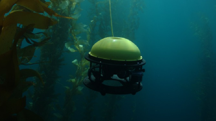 SeaDrone can perform underwater operations for minimal costs and little experience.