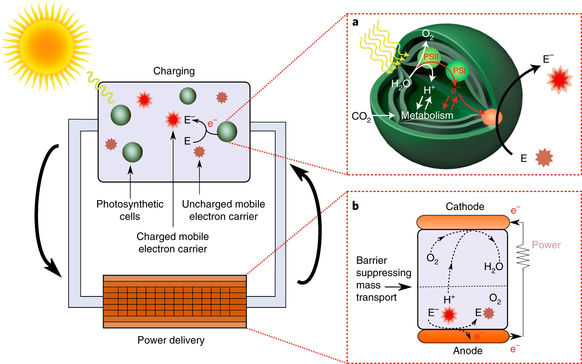 The charging and delivery processes in a flow-BPV. Source: University of Cambridge