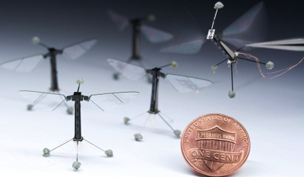Robotic insects. Image Credit: Microrobotics Lab, Harvard John A. Paulson School of Engineering and Applied Sciences and the Wyss Institute for Biologically Inspired Engineering
