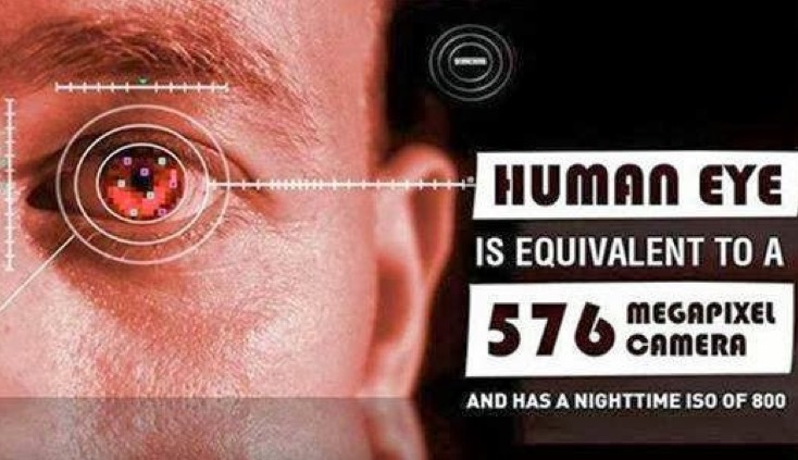 According to ClarkVision, the human eye is a 576-megapixel camera with an ISO of approximately 800. Graphic: Muththiha Harishan