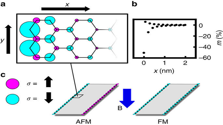 (a) On-site magnetization profile of a zigzag graphene edge. (b) The on-site magnetization of each site in a unit cell as a function of distance from the edge.  (c) Graphene nanoribbon edge magnetization in the absence and presence of an externally applied magnetic field. (Source: Gelfand)
